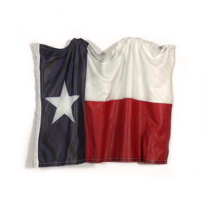 A Hand Held Texas Flag, 2019