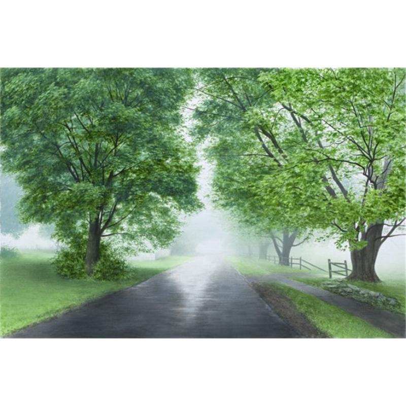 Early May Fog (0/195)