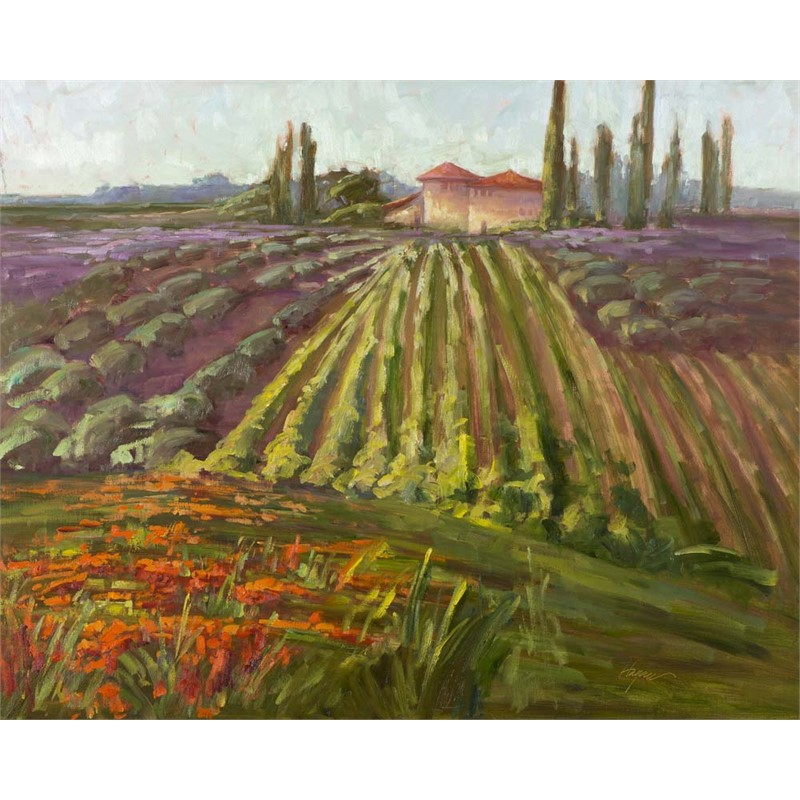 Tuscany, The Contessa's Farm