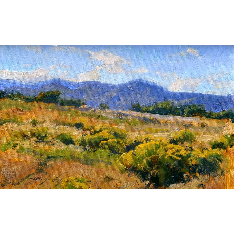 Colorado Prairie in August