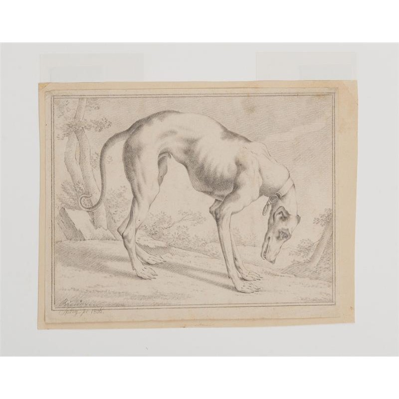 A HOUND, German, 1800