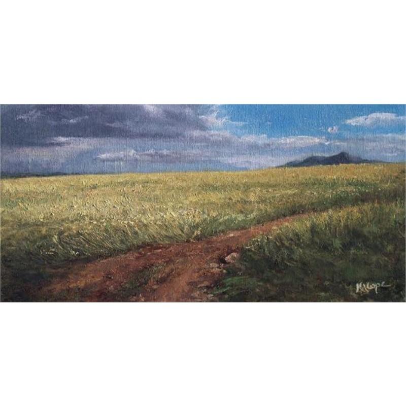 Summer Wheat on Hogback Ridge