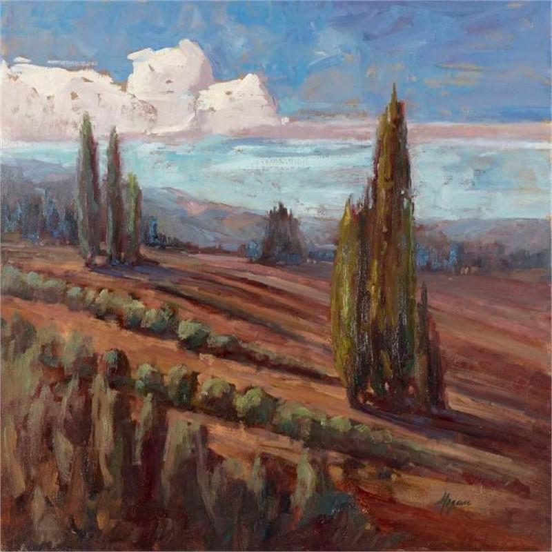 Fields Near Siena