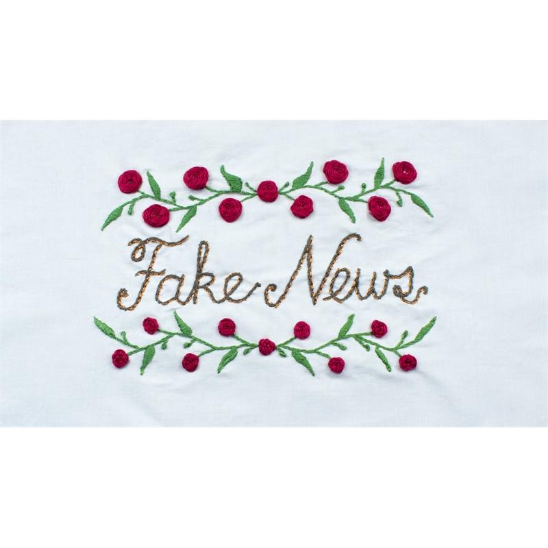 Fake News, 2019