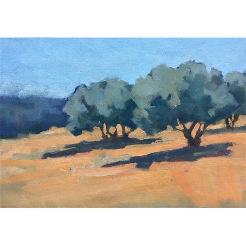 Olives in the Sun, 2019