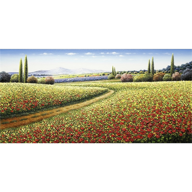 Along the Red Poppy Fields by Mario Jung