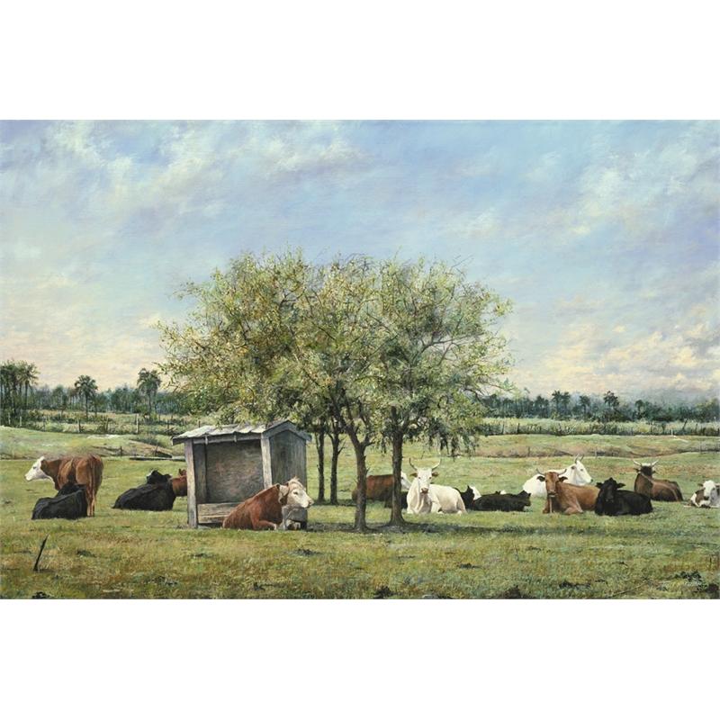 Cows (0/950)