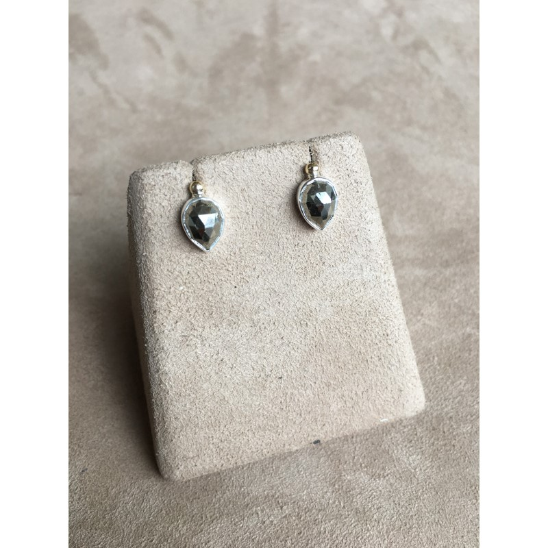 3037 Earrings