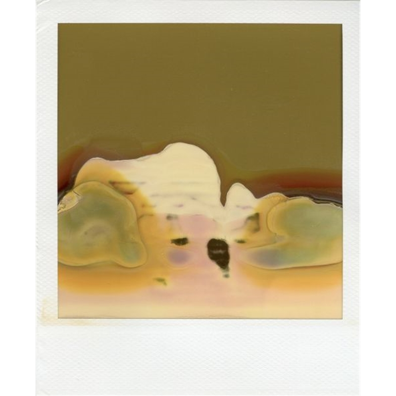 Shan Shui #1, 2006