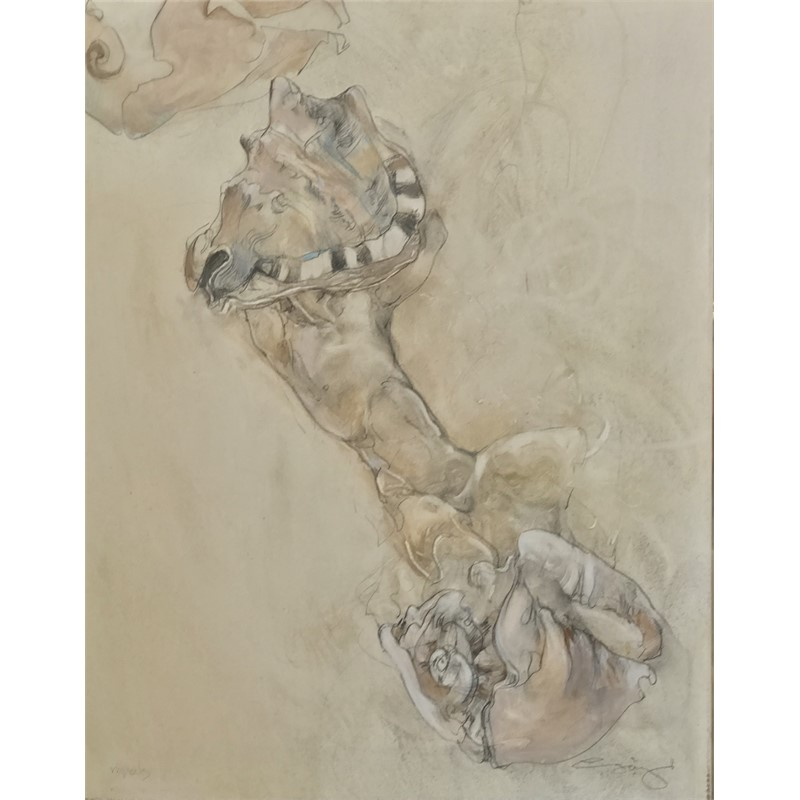 Mussels by Jurgen Gorg