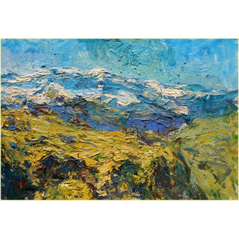 Alpine Meadows and Snowy Peaks