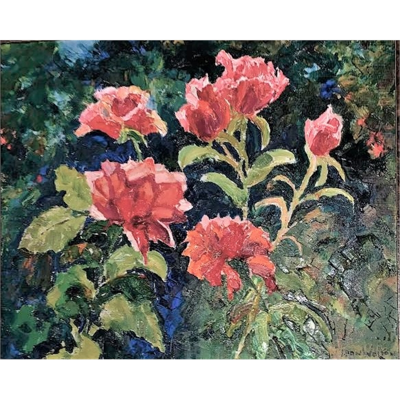 Peter's Roses by Alan Wolton