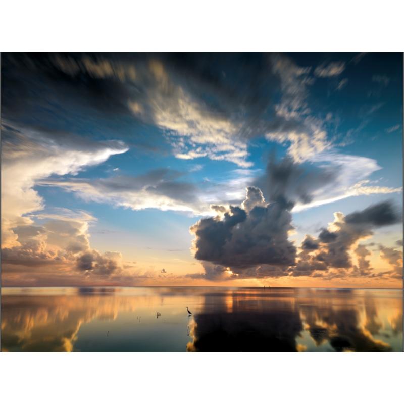 Cow Key, Key West, Florida (1/3), 2014