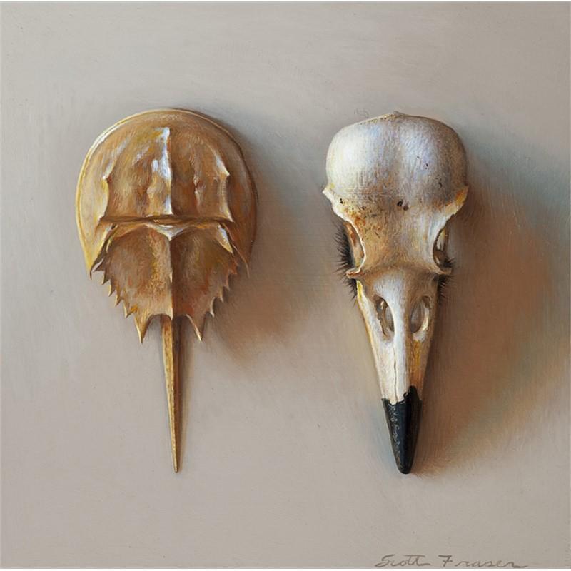 Skull and Crabshell