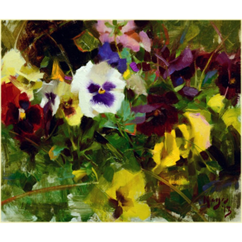 Pansy Song