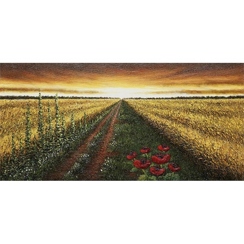 Warm Sky by Mario Jung