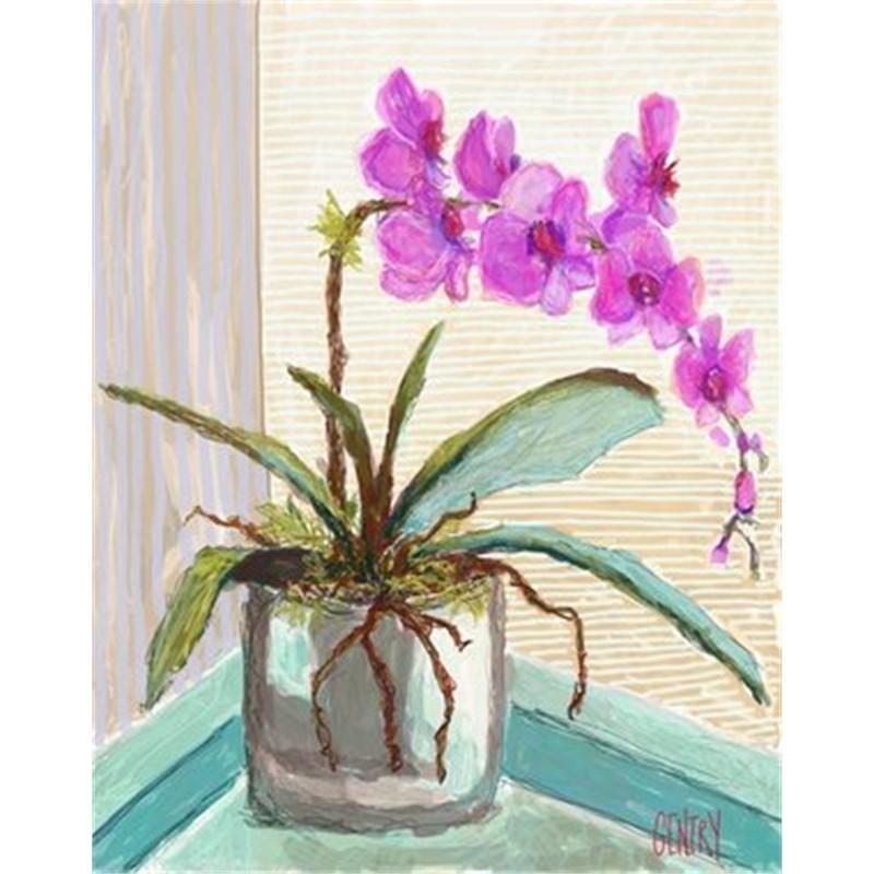 Orchid Landia, 2018