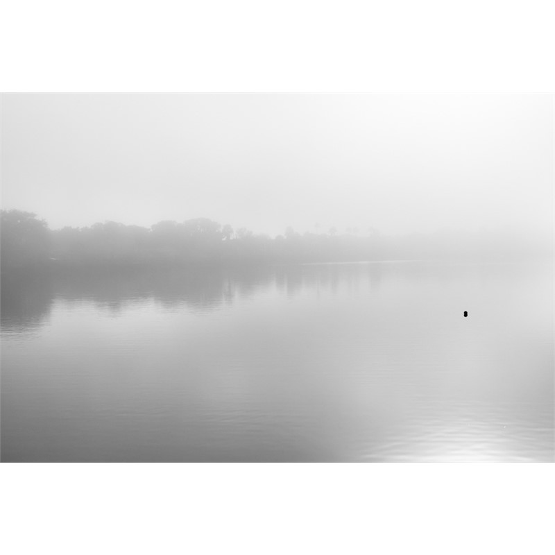 tarpon springs fog (Edition ), 2017