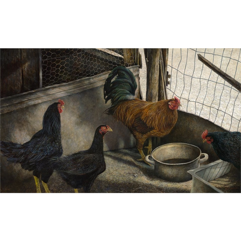 Chickens (0/950)