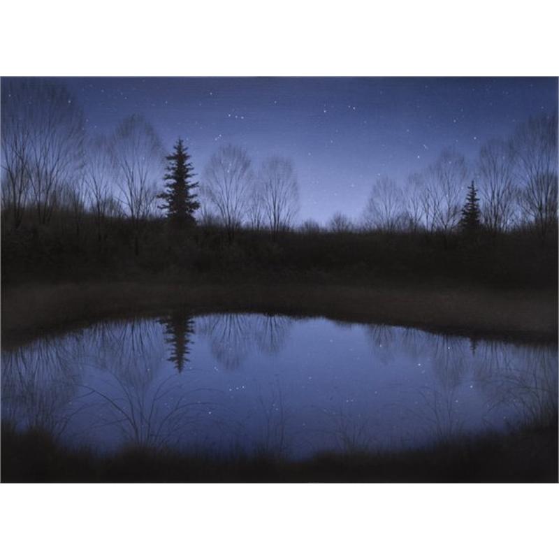 Starry Pond (0/100)