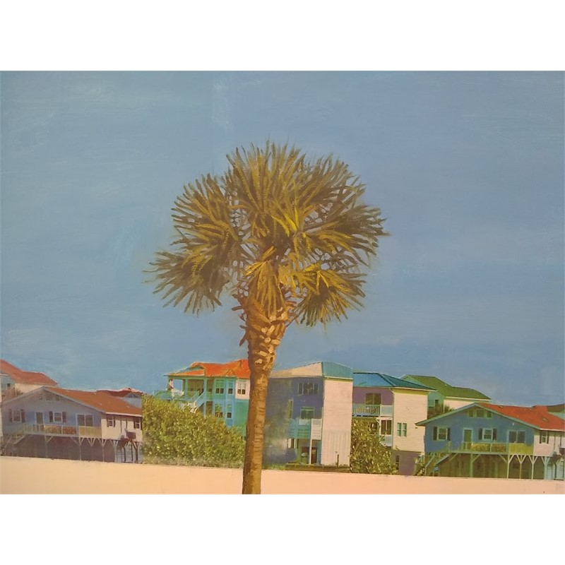Palm and Cottages, 2019