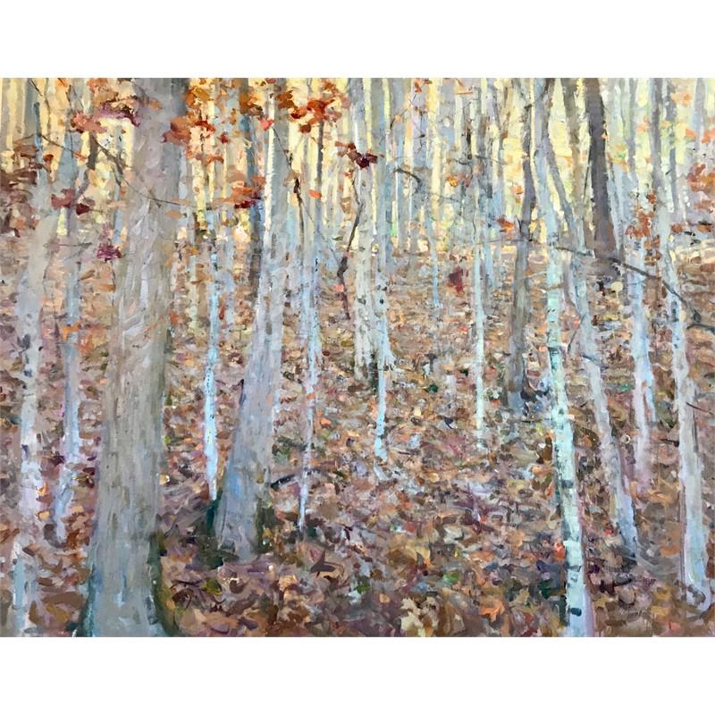 West Virginia Woods in Autumn