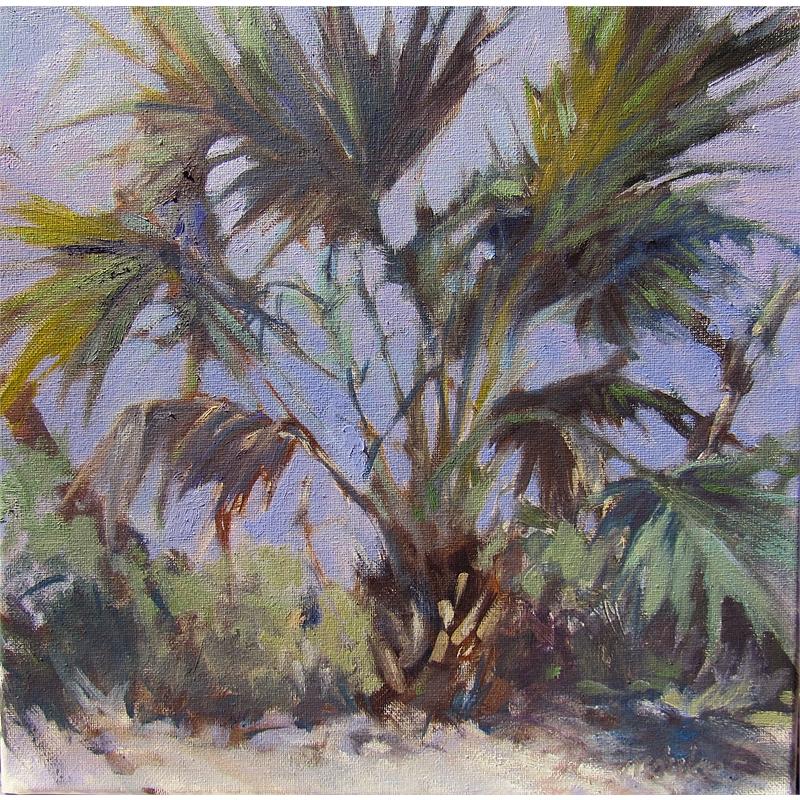 Pindo Palms