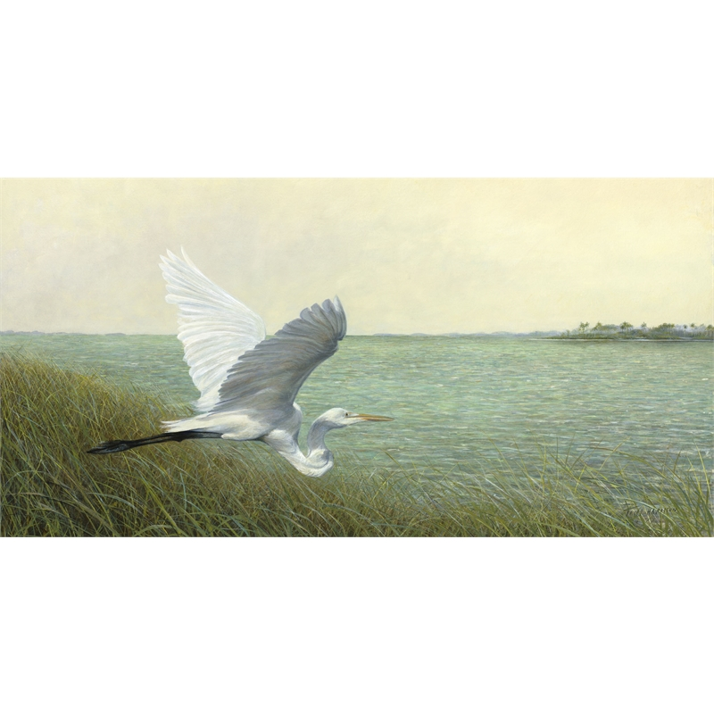 Great Egret (0/950)