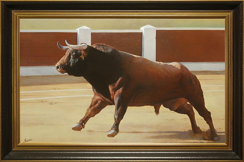 Paloma Bull- SA DE284- DP