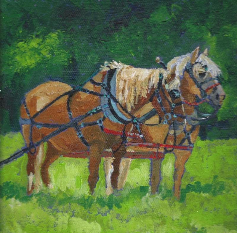 Wicasset Farm Horses
