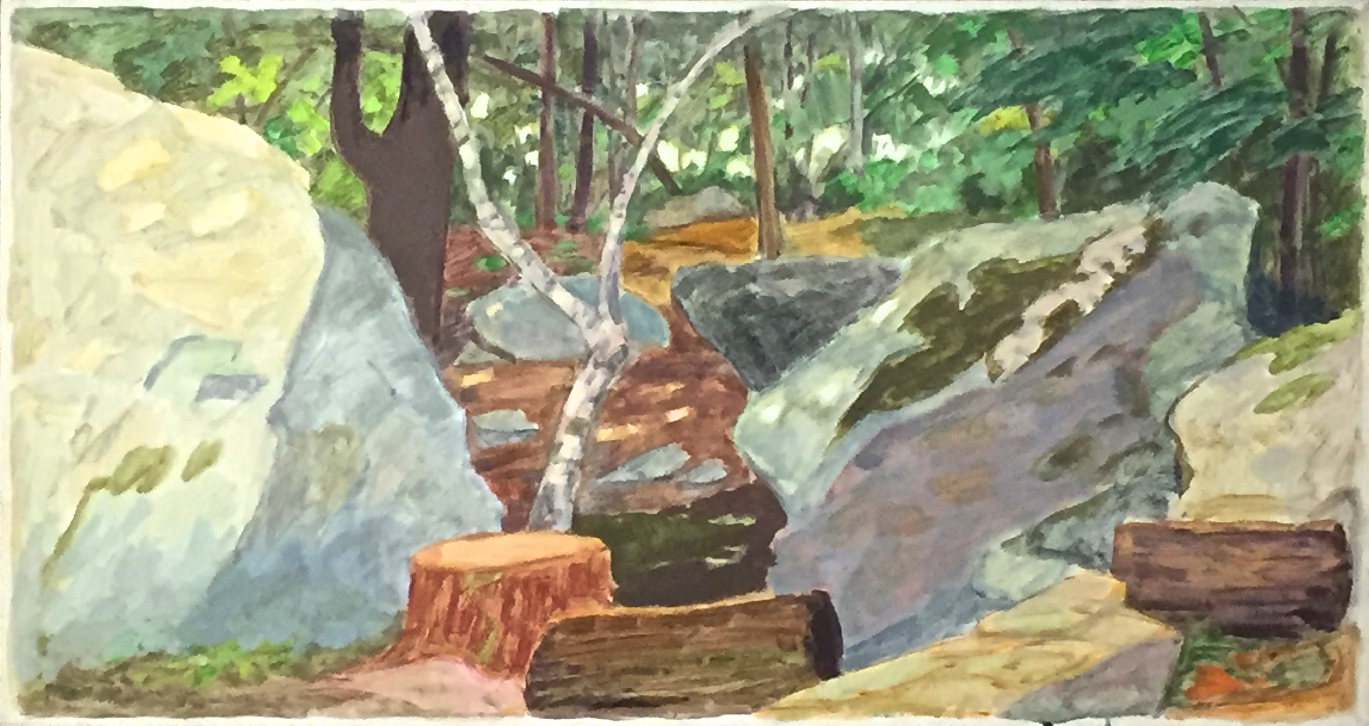 Large Boulders in Woods